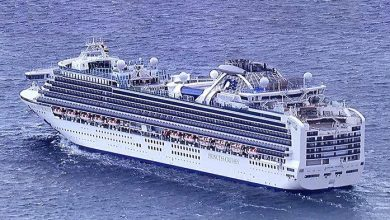 Photo of Pemerintah Tunggu Izin Evakuasi WNI dari Kapal Diamond Princess